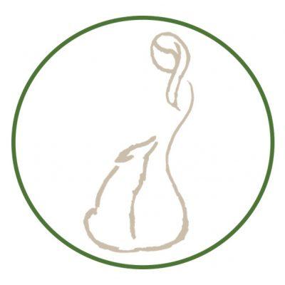 teamdogs_logo